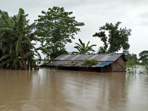 Assam Floods1.jpg