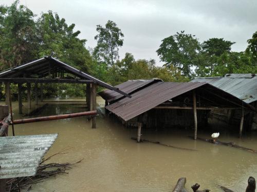 Assam Floods3.jpg